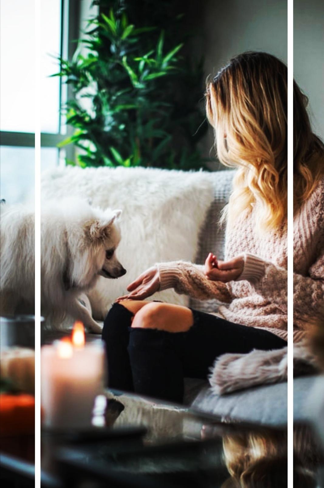 zostań w domu - kobieta z psem w swoim mieszkaniu